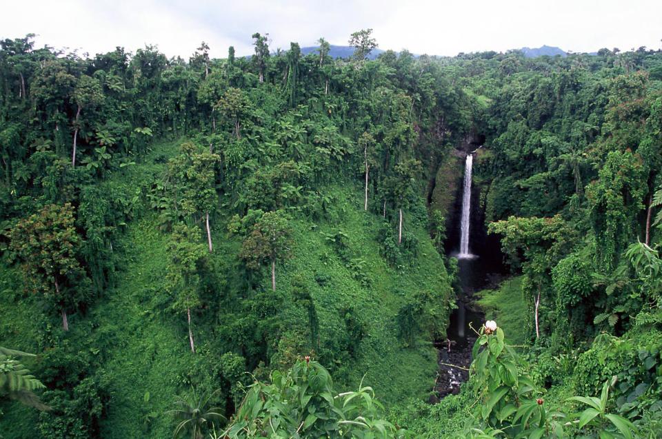 Samoa Waterfalls