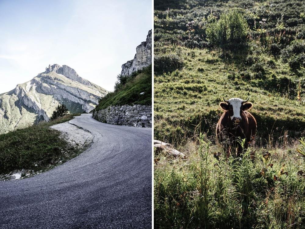 rennrad-route-des-grandes-alps-alpen