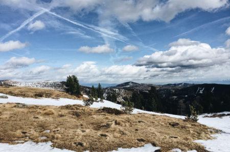 falkert-kaernten-turracher-hoehe-ski