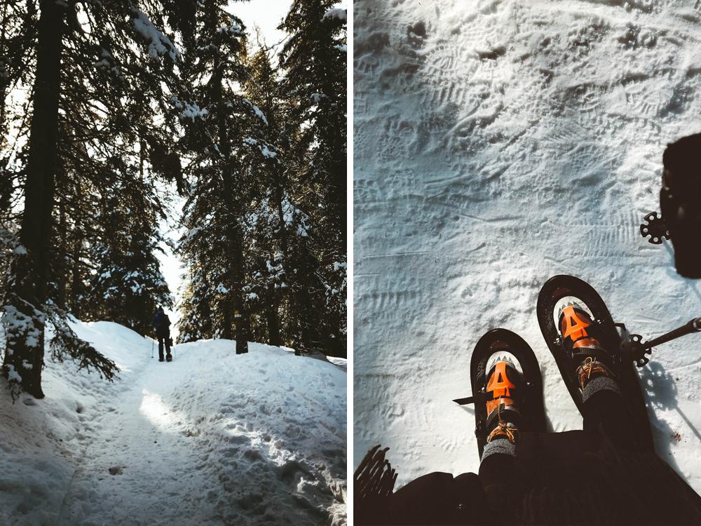 suedtirol-urlaub-winterurlaub-skiurlaub-meran-2000-merano-italien