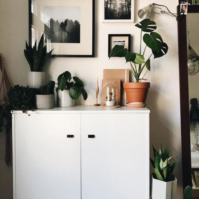 Meine Lieblingsecke im Schlafzimmer Selbst geschossene Bilder Pflanzen und derhellip