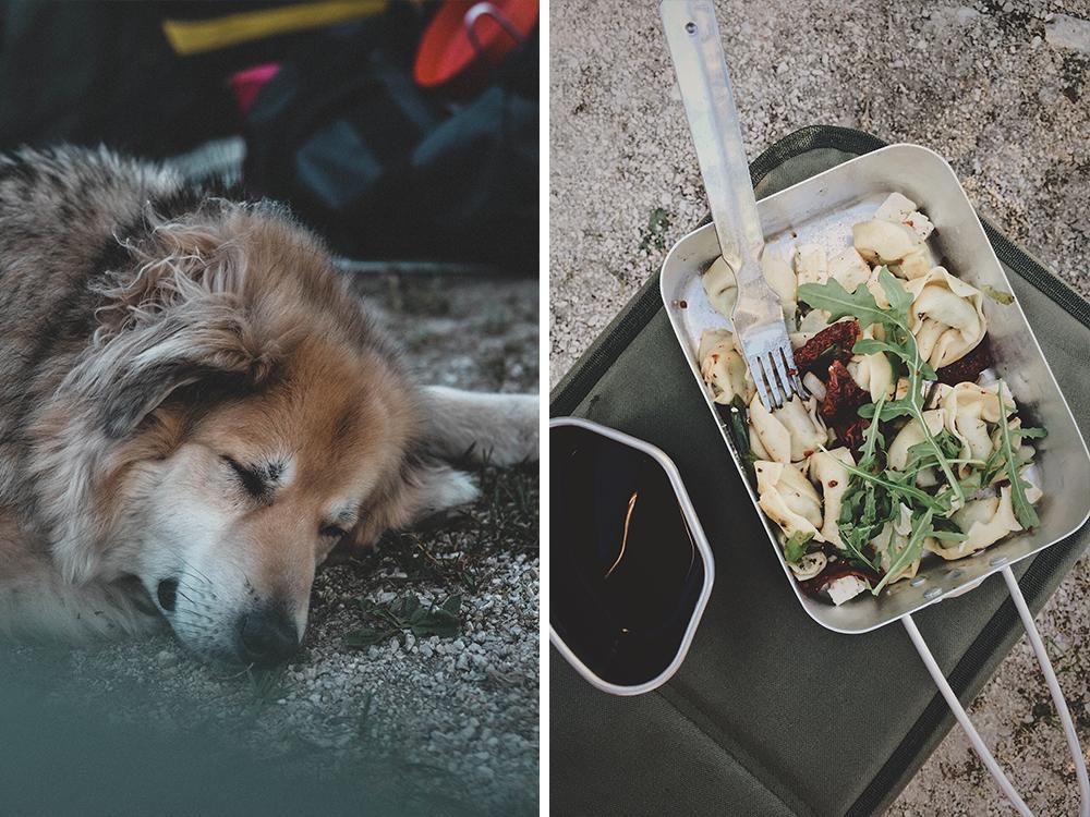 camping-mit-hund-dog-urlaub-suedtirol-dolomiten