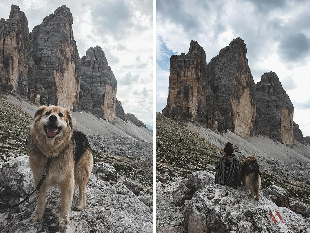 drei-zinnen-dolomiten-suedtirol-wandern-wanderung-hund-campen-camping