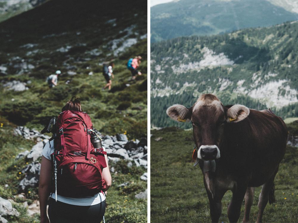 flims-wandern-segnespass-segnesboden-segneshuette