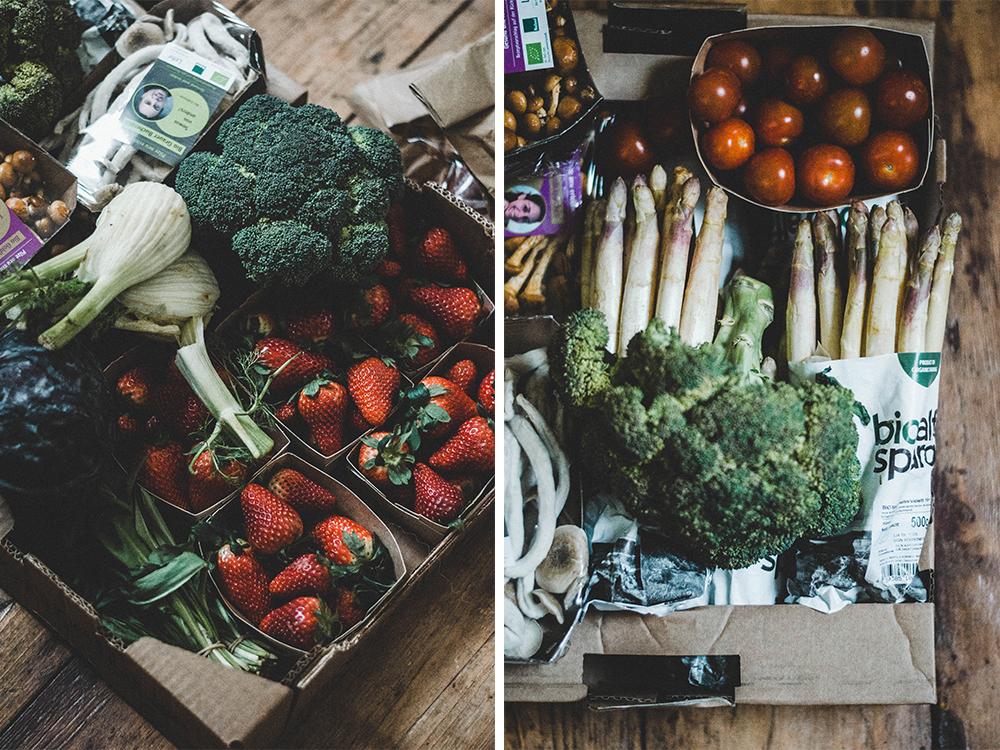 foodsharing-foodsaver-lebensmittel-retten-lebensmittelverschwenung