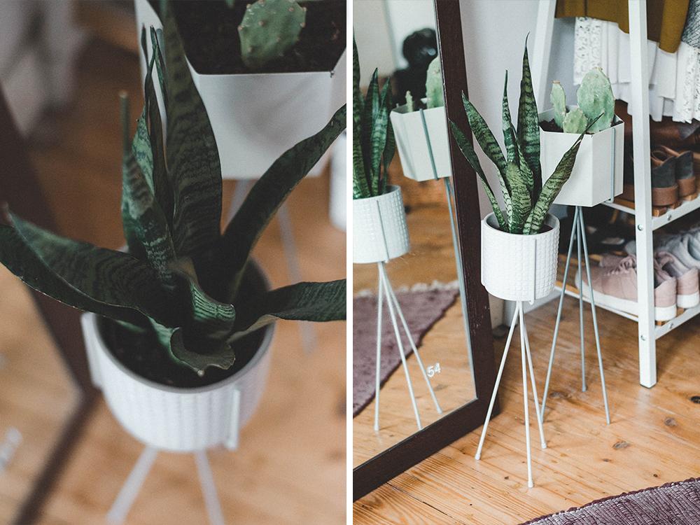 Urban Jungle zimmerpflanzen-pflanzenstaender-planter-flinders-uebertopf-pflanze-kakten-kanonierblume
