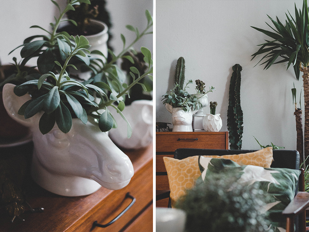 zimmerpflanzen-wohnzimmer-interior-interiorblogger-danish-teak-sideboard-uebertopf-pflanze-urban jungle-kanonierblume