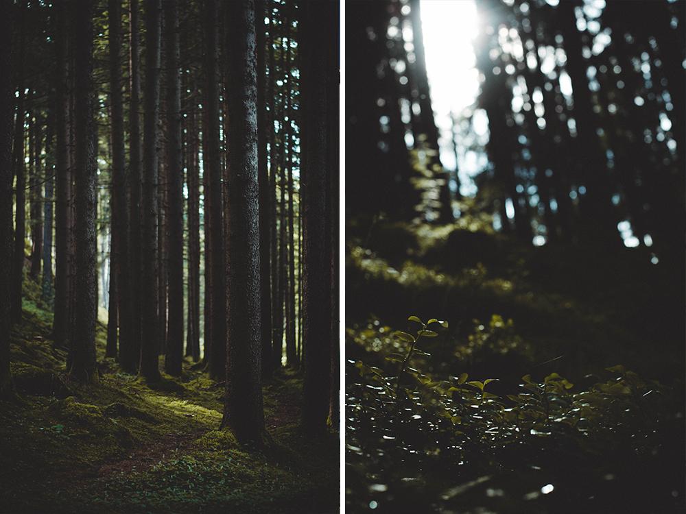 slowtrails-slow-trail-kaernten-oesterreich-wandern